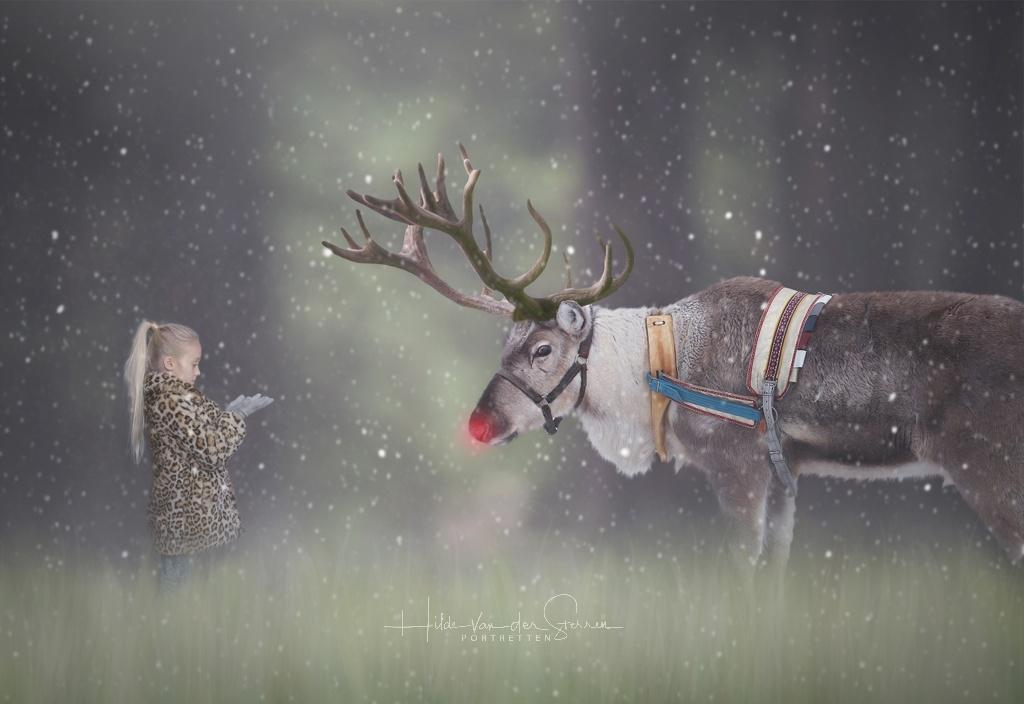 Hilde van der sterren kerst 2018 compositie